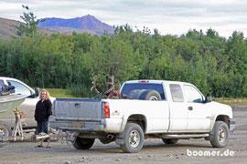 die Caribou-Jagd war erfolgreich