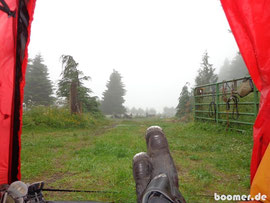 Nebel ist in den Bergen Washingtons nichts seltenes