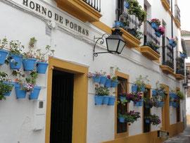 Córdoba - Calle Horno de porras