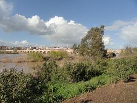 Badajoz - Puente de Palmas