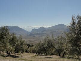 Cerro de la Matanza