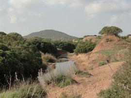 Arroyo Salado