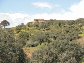 El Vacar - Castillo