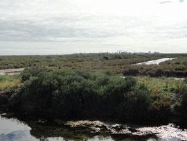 Bahía de Cadiz