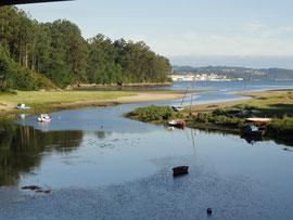 Rio Lambre bei der Wildschweinbrücke