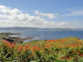 Corme - Punta Roncudo