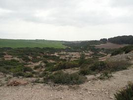 Nähe Laguna de Montelllano