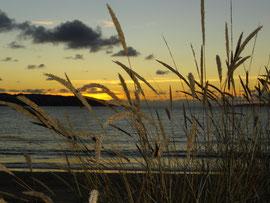 Mino - Praia Grande