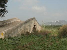 Zwischen Los Badalejos und Medina Sidonia