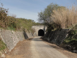 Cabra - Via Verde Túnel de Plantío