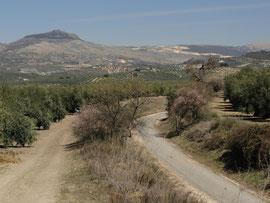 Via Verde und Landwirtschaftsweg