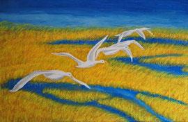 """"""" Gänseflug""""   gemalt in Öl      0,50 / 0,70 cm…  150,- €"""
