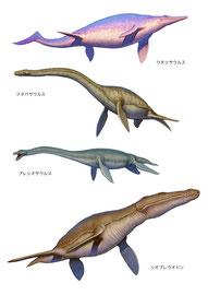 ポプラ社・WONDA恐竜 2D海生恐竜