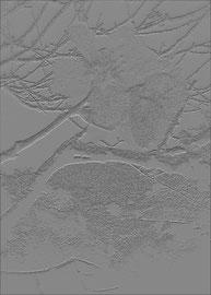 """""""Relief 9 / 2016"""" WVZ 4219 a / datiert 2016 Limitierter Fine-Art-Print 1 v. 5 nach Abruf auf Hahnemühle Museum-Etching-350g-Papier (oder ähnlich) Maße b 40 cm * h 55,0 cm"""
