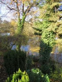 Blick über die Terrassen auf den Ebensee im Herbst