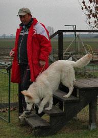 Welpenprüfung 25.11.2006