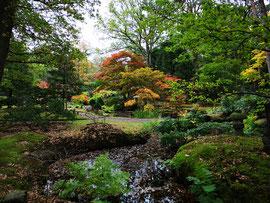 Japanischer Garten in Den Haag