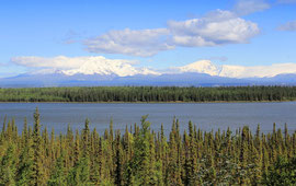 ENTLANG DER WRANGELL MOUNTAINS AM WILLOW LAKE
