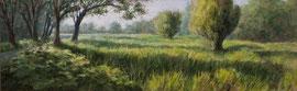 º Hoornsedijk, vroeg, a/p, 68x22cm, '09