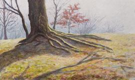 º Borkener Paradies, ochtend, a/p, 102x61cm