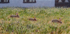 Drie konijntjes, o/a/p, 24x11cm