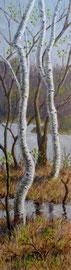 Berken, tegen het voorjaar, 2, a/p, 33x122cm