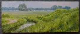 º Reitdiepdijk met grassen, o/p, 26,5x10,5cm