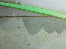 "Light Fog in a Morning, 36"" x 48""/ 晨曦薄雾, 92cm x 122cm, 2012"