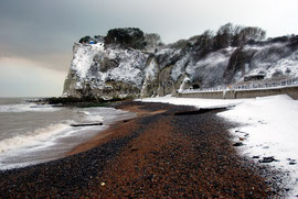 Shingle and snow
