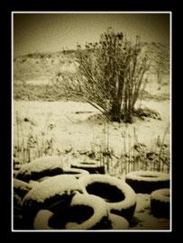 camera work,fotografie vignettate,foto vintage,fotocamere antiche,toycamera,bianconero,fineart,Alfred Stieglitz,Paul Strend,Eduard Steichen,Robert Demachy,Julia Margaret Cameron