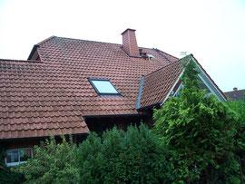 Meisel Dachreinigung Vordorf vorher