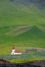Kirche in Lupinengebettet
