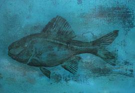 """Fabien Bruttin, """"Fish"""", 2012, 70x100 cm (27.5x39.4 in), technique mixte sur MDFF"""