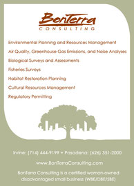 Ad Design for BonTerra Consulting