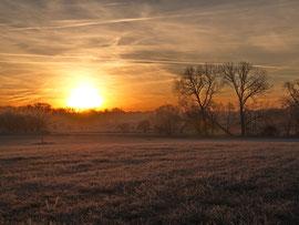 Sonnenaufgang in den Ahsewiesen