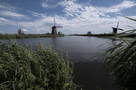 Windmühlen nahe Rotterdam, Niederlanden.