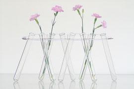 """Vase """"Stielblüten"""" aus Reagenzläsern, die durch eine Gummischnur mit einer Edelstahlschiene verspannt sind"""
