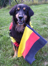 Shadow Deutschland Fan
