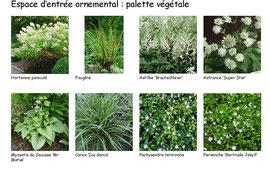 Palette végétale du côté entrée