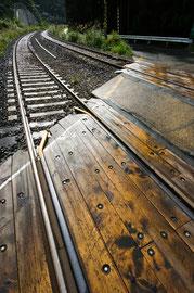 渡る雨上がり dpc1 2009年1月号「入選」作品