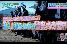 大阪府警察本部警察犬と鑑識課の警察官(刑事さん)