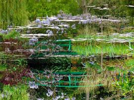 Petit vert de Monet