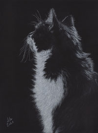 """my """"Lisa"""", white charcoal and pastel on Fabriano Black, 24 x 31 cm, own reference photo"""