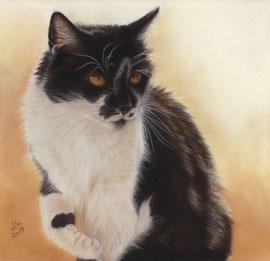 "my ""Lisa"", pastel on pastelmat, 30 x 30 cm, own referencephoto"