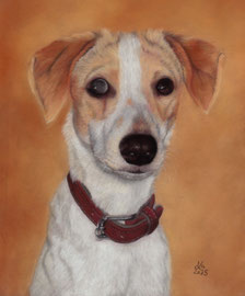 "blind, young ""Jack"", pastel on pastelmat, 22 x 28 cm, commission"