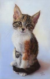 """Sady"", pastel on pastelmat, 20 x 31 cm, commission"
