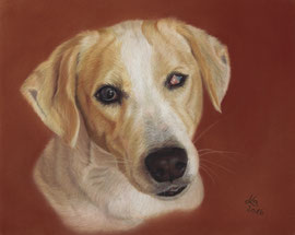"""blind """"Hannah"""", pastel on pastelmat, 20 x 25 cm, commission (own reference)"""