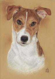 """Barnay"", pastel on pastelmat, 20 x 30 cm, commission"