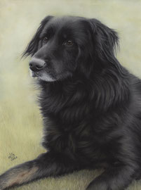 """Vin"", pastel on pastelmat, 30 x 40 cm, commission"