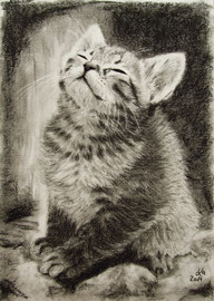 charcoal, 20 x 28 cm, reference photo Marina del Castell; SOLD!